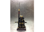 Samurai Warrior 001
